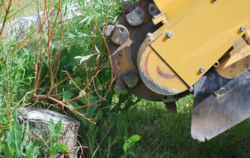 state-of-the-art stump grinding equipment