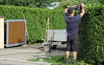 professional Brent Mill hedge cutting services
