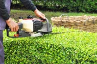 Brent Mill hedge trimming services