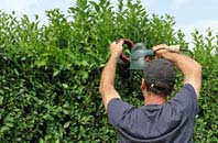 free Brent Mill hedge trimming quotes