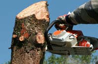 free Brent Mill tree removal quotes